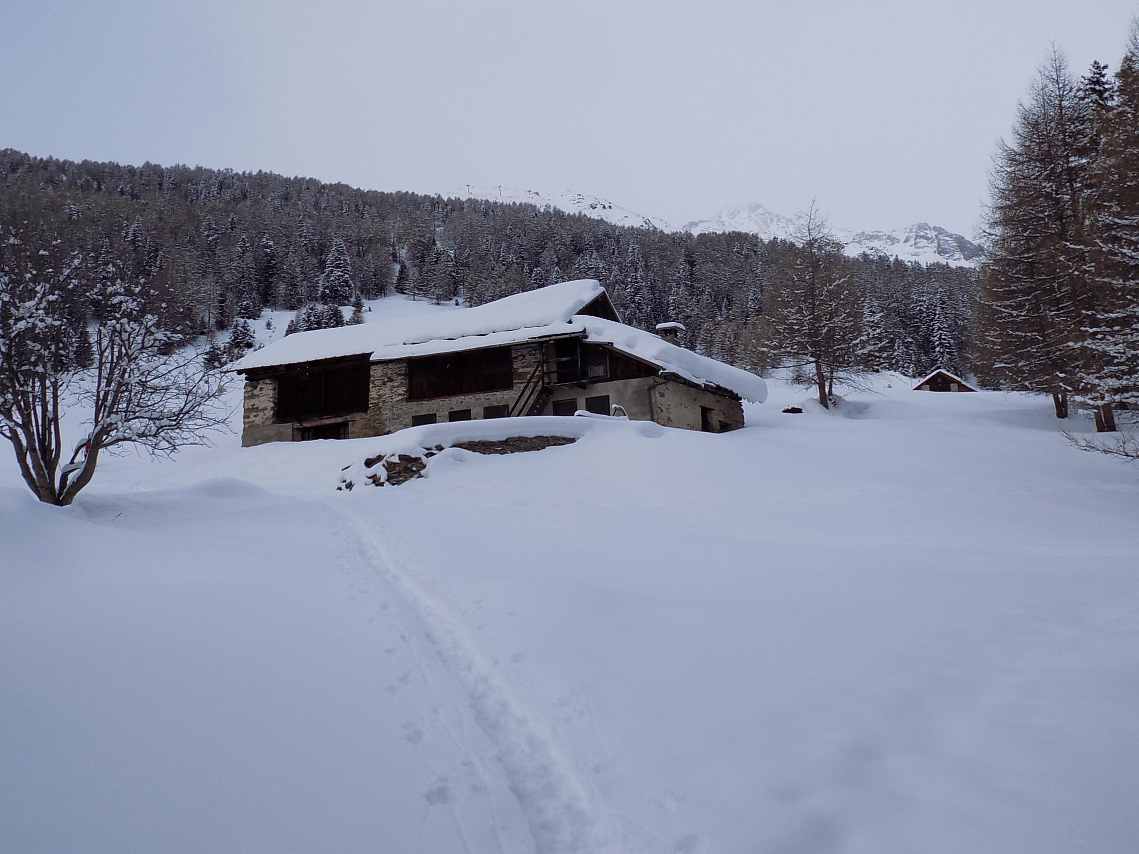 Nowcasting Trentino febbraio 2018-dscn6605.jpg