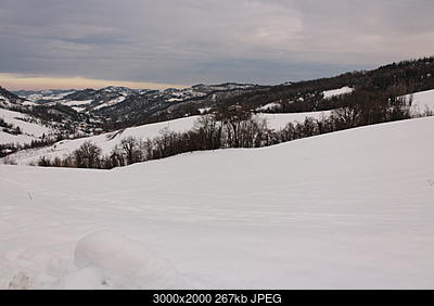 Emilia - basso Veneto - bassa Lombardia, 01-15 Febbraio 2018-img_1119.jpg