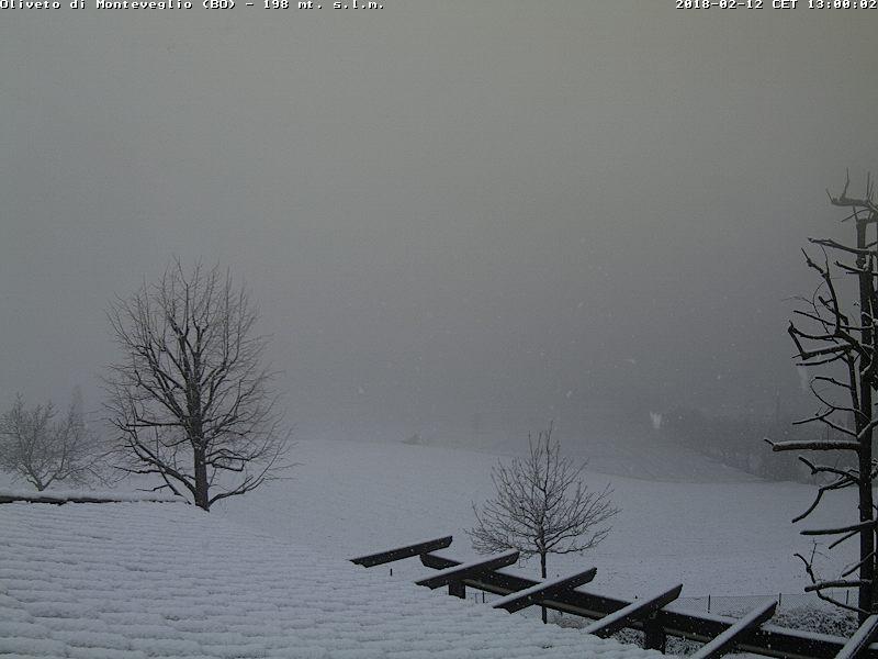 DIAMANTECASTING Romagna 12/02 18/02-monteveglio.jpg