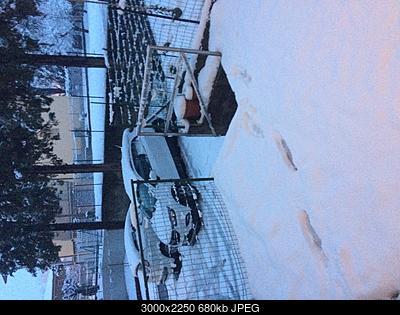 Emilia, basso Veneto, bassa Lombardia 16 - 28 febbraio 2018-46de2d55-dbb2-4ae5-9232-49d5abf0a65e.jpg