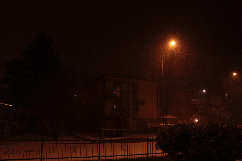Emilia, basso Veneto, bassa Lombardia 16 - 28 febbraio 2018-img_1197.jpg