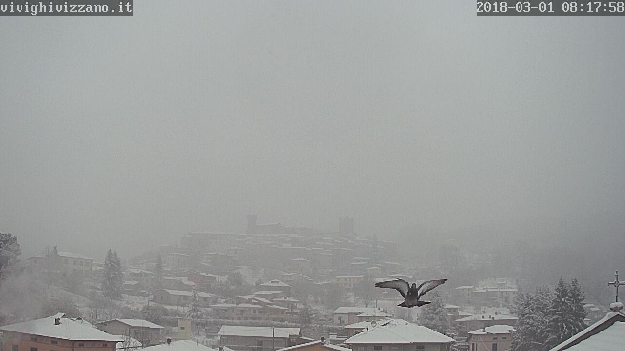 Eccole! tutte le webcam del Centro Italia!!-neve-piccione.jpg