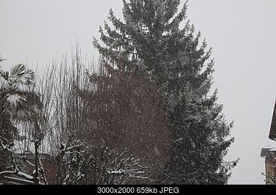 Nowcasting Emilia - basso Veneto - bassa Lombardia 1-2-3 Marzo 2018-img_1279.jpg