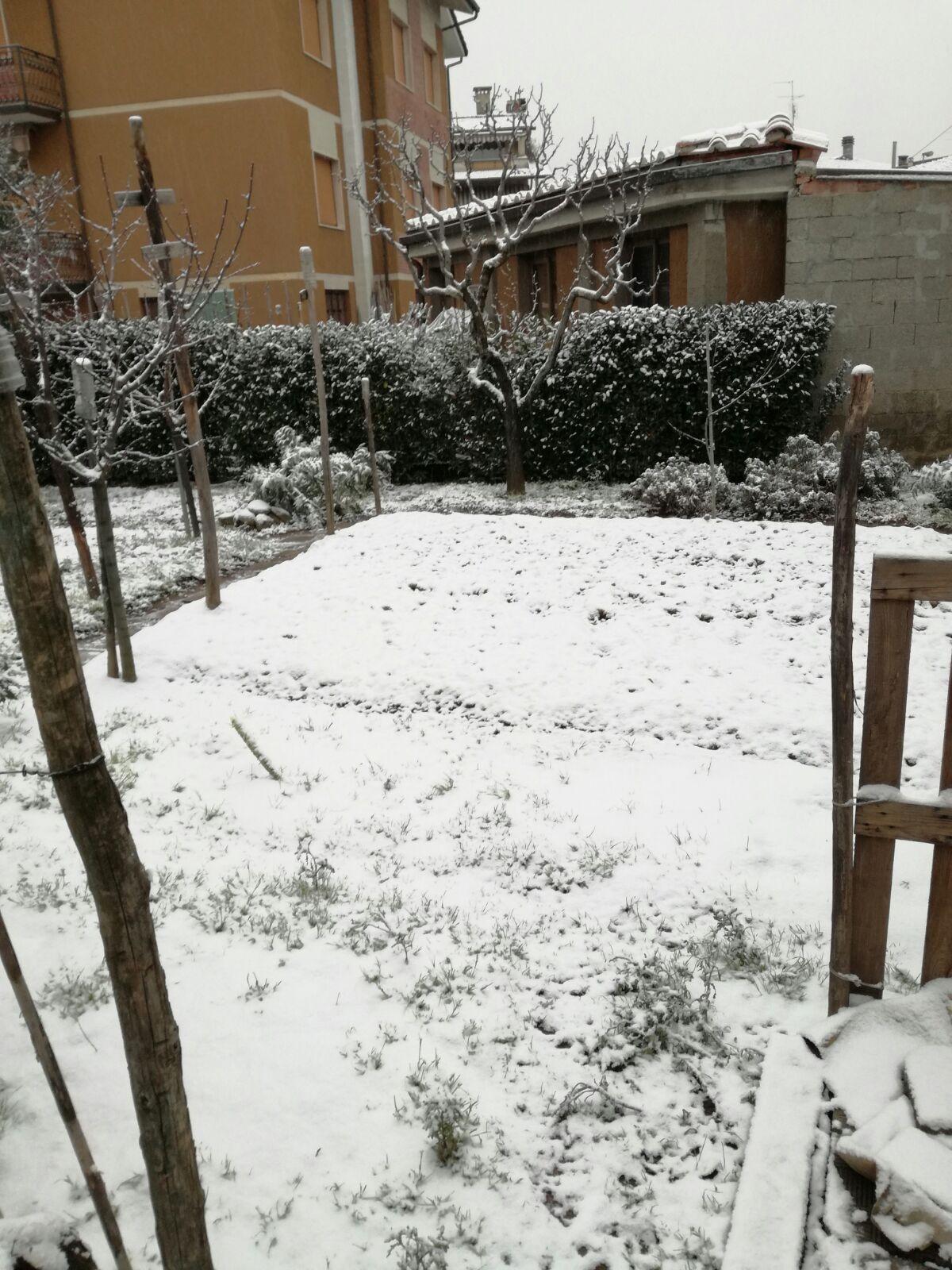 SNOW(e poi rain?)Casting Toscana Giovedi 1 marzo 2018-img-20180301-wa0033.jpg