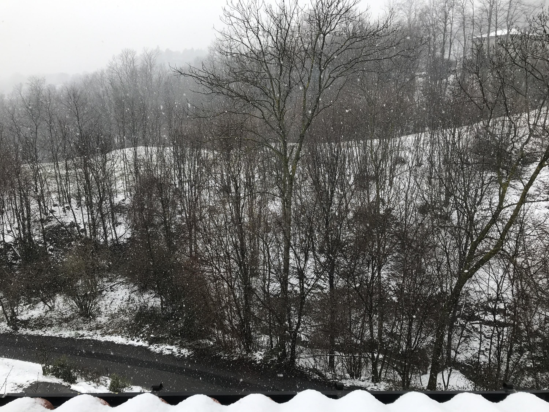 Nowcasting primavera 2018 Varese-Como-lecco-canton ticino:-image.jpg