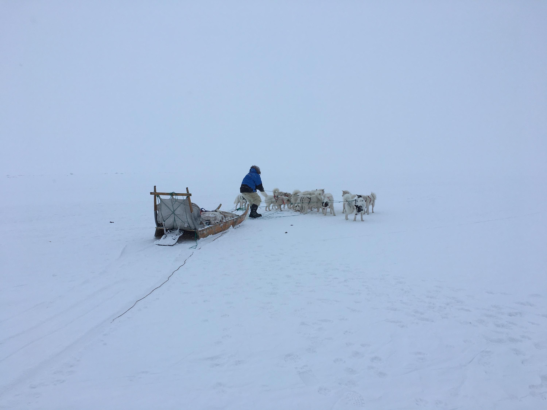 Viaggio in Groenlandia!-img_4346.jpg