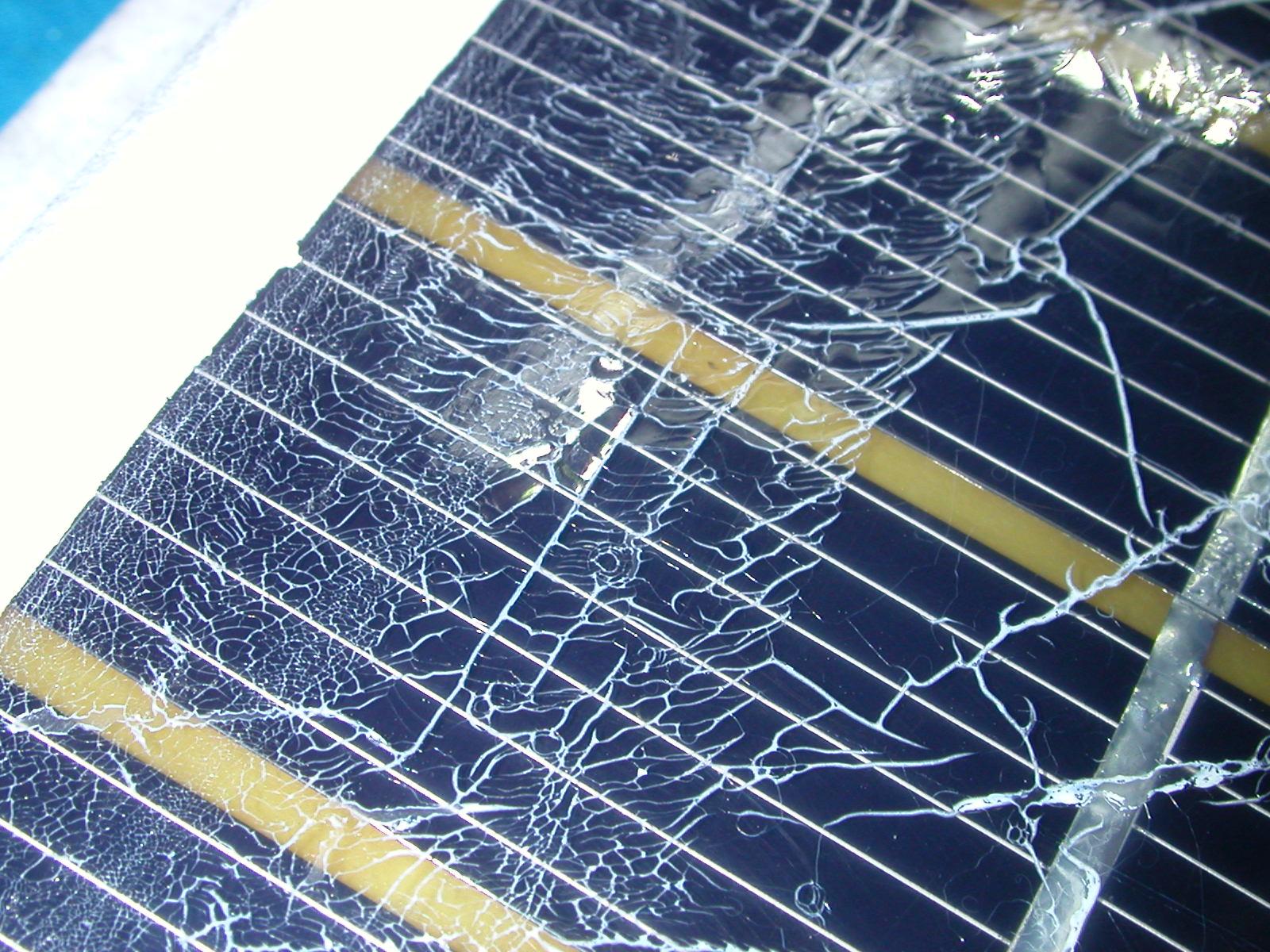 Problemi infiltrazioni di acqua su scatola scheda trasmissione ISS-dscn6601.jpg