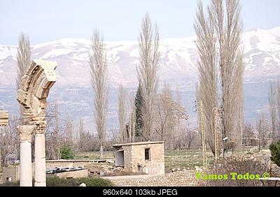 Catena del Libano - Situazione neve attraverso le stagioni-29365815_1638934752880309_6773699201487339520_n.jpg