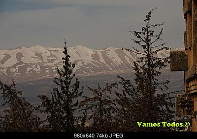 Catena del Libano - Situazione neve attraverso le stagioni-29342658_1638932732880511_3818838173732044800_n.jpg