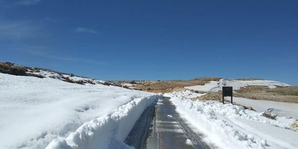 Catena del Libano - Situazione neve attraverso le stagioni-29177794_628644260809262_5894770002441171160_n-1-.jpg
