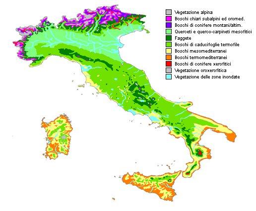 Posizione geografica dell'Emilia Romagna-pignatti_650-image001.jpg