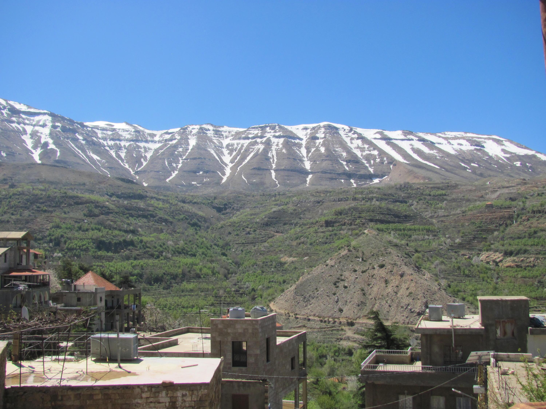 Catena del Libano - Situazione neve attraverso le stagioni-cedri-bqaakafra-aprile-2018-cam-022.jpg