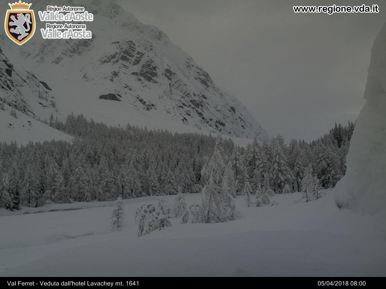 Valle d'Aosta - Primavera 2018-big_ferret2.jpg