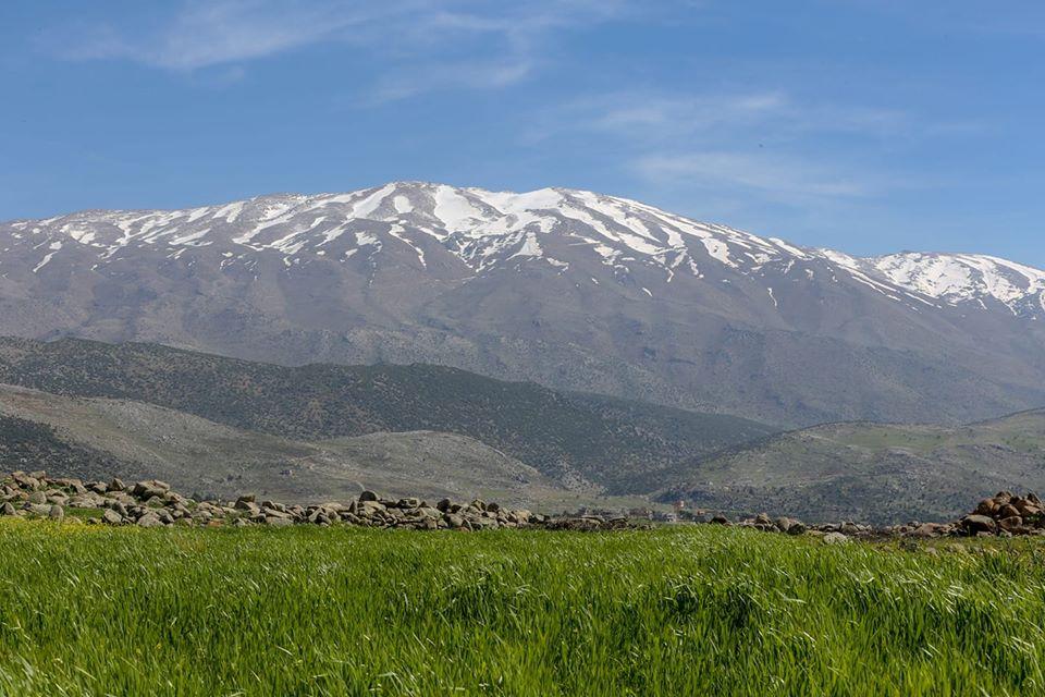 Catena del Libano - Situazione neve attraverso le stagioni-972238_820908778096269_8357407013205301140_n.jpg