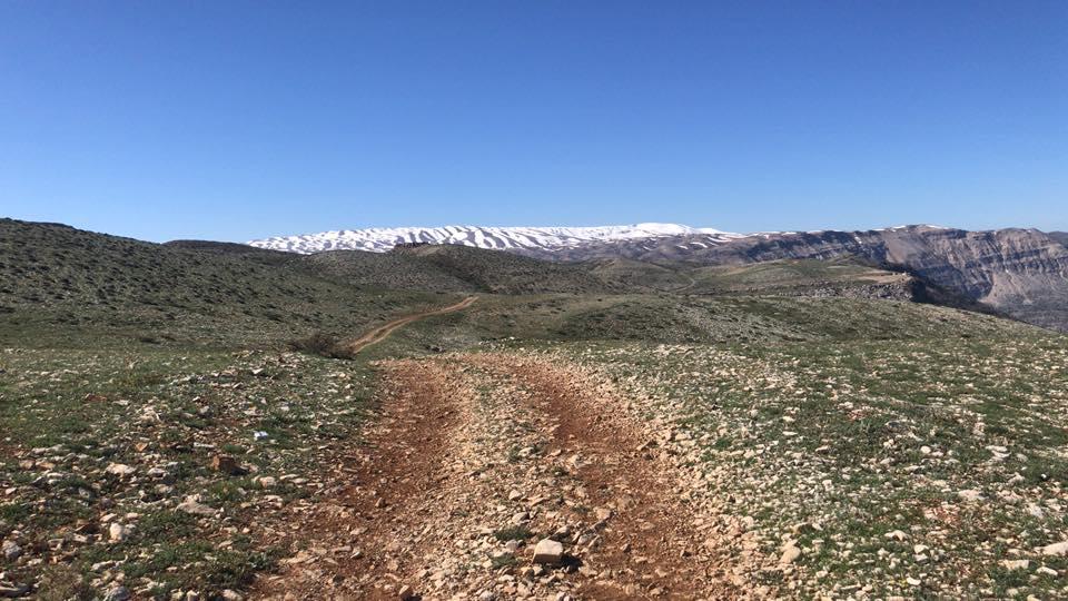 Catena del Libano - Situazione neve attraverso le stagioni-29791090_10160232813615181_4562849697651228672_n.jpg