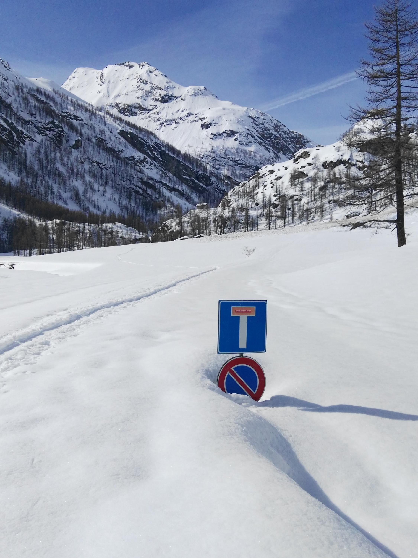 Valle d'Aosta - Primavera 2018-img_20180416_100923.jpg