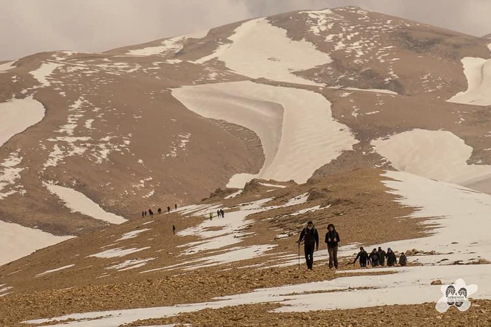 Catena del Libano - Situazione neve attraverso le stagioni-31543428_833570010163479_6040102380555468800_n.jpg