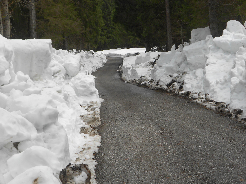 Busa della neve, massiccio del grappa-dscn0924.jpg