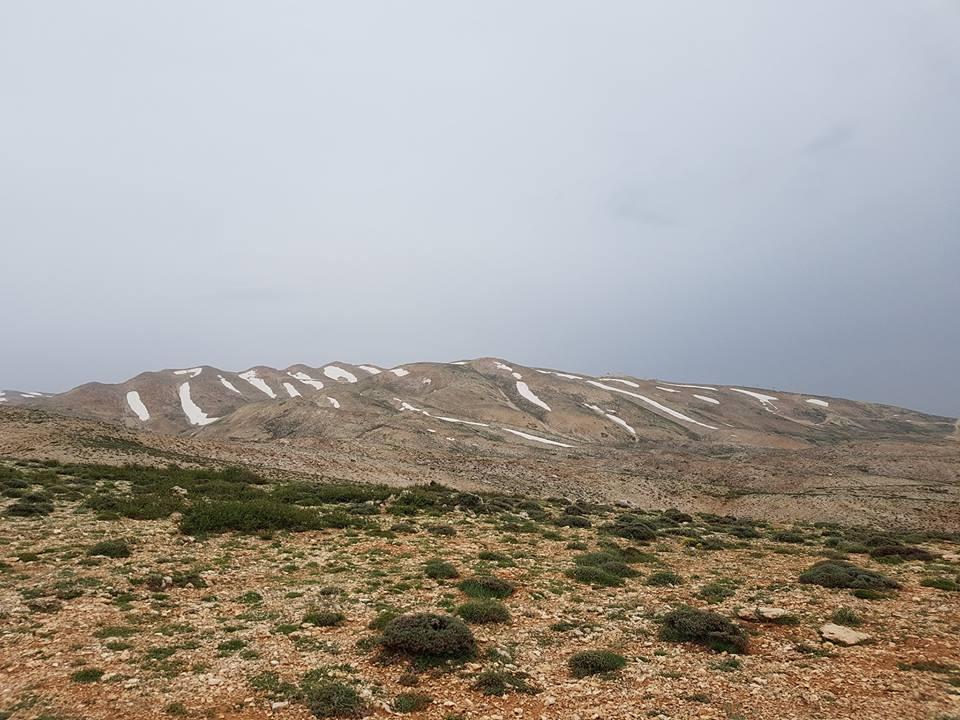 Catena del Libano - Situazione neve attraverso le stagioni-31870949_1925174147495533_817454077406347264_n.jpg