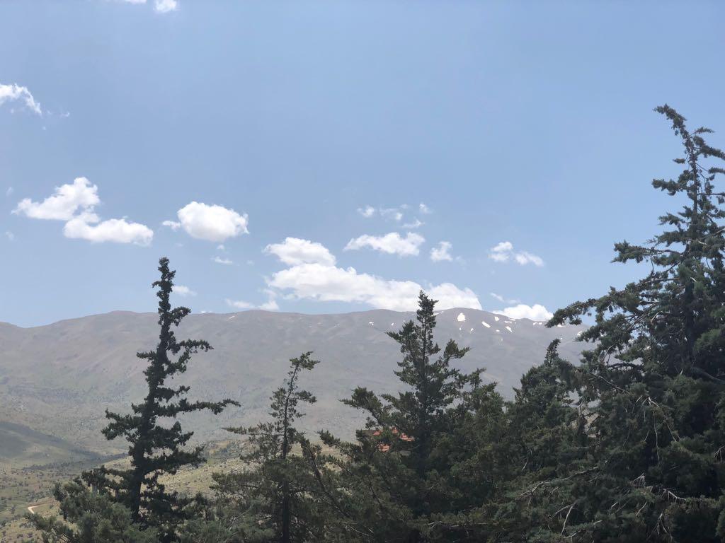 Catena del Libano - Situazione neve attraverso le stagioni-25-may-2018-cell-and-002.jpg