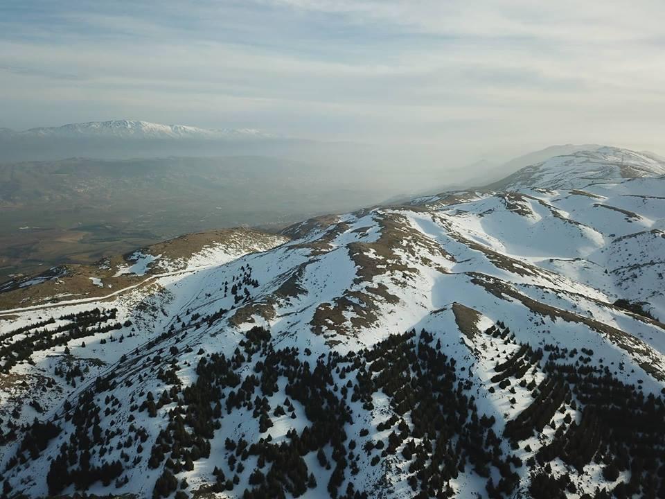 Catena del Libano - Situazione neve attraverso le stagioni-34602576_10155312972422077_1469512099569860608_n.jpg