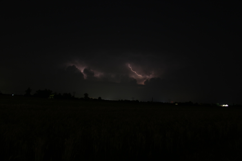 Emilia, basso Veneto, bassa Lombardia 09 giugno - 24 giugno 2018-img_1673.jpg