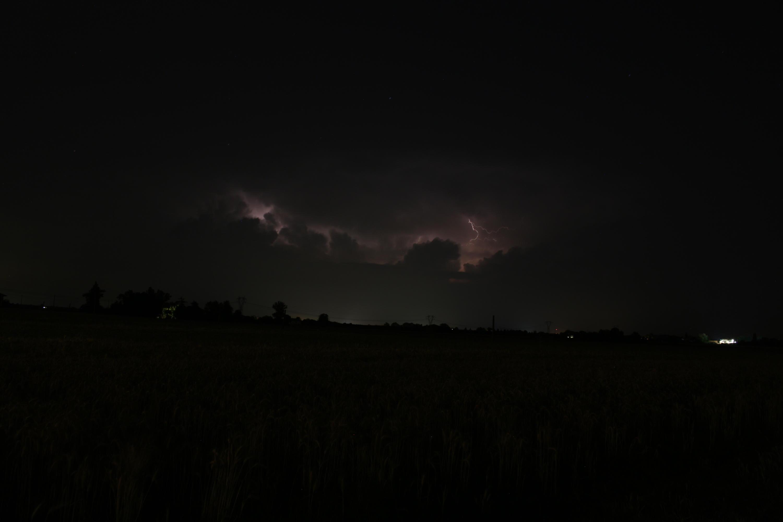 Emilia, basso Veneto, bassa Lombardia 09 giugno - 24 giugno 2018-img_1677.jpg
