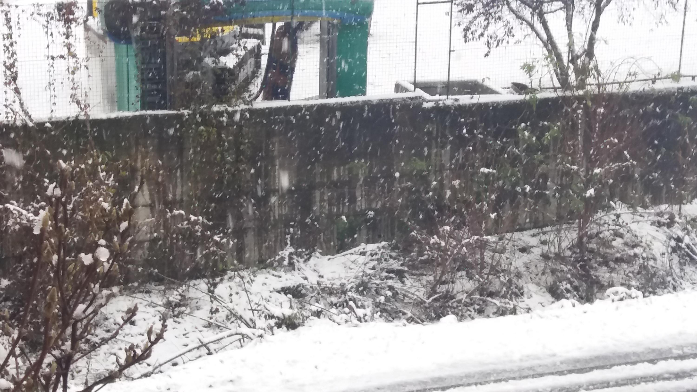 Nevicate inverno 2017-18 a Carmagnola (TO)-20171202_091945-1-.jpg