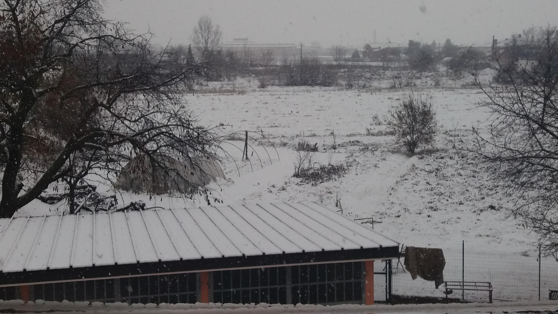 Nevicate inverno 2017-18 a Carmagnola (TO)-20171202_092054-1-.jpg