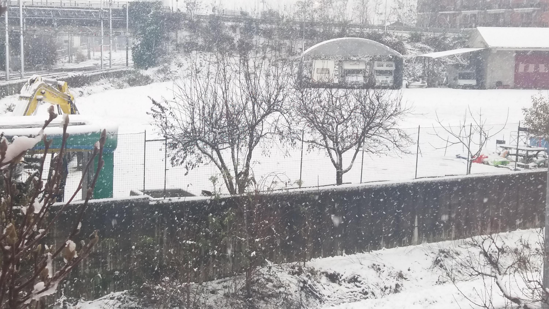 Nevicate inverno 2017-18 a Carmagnola (TO)-20171202_092920-1-.jpg