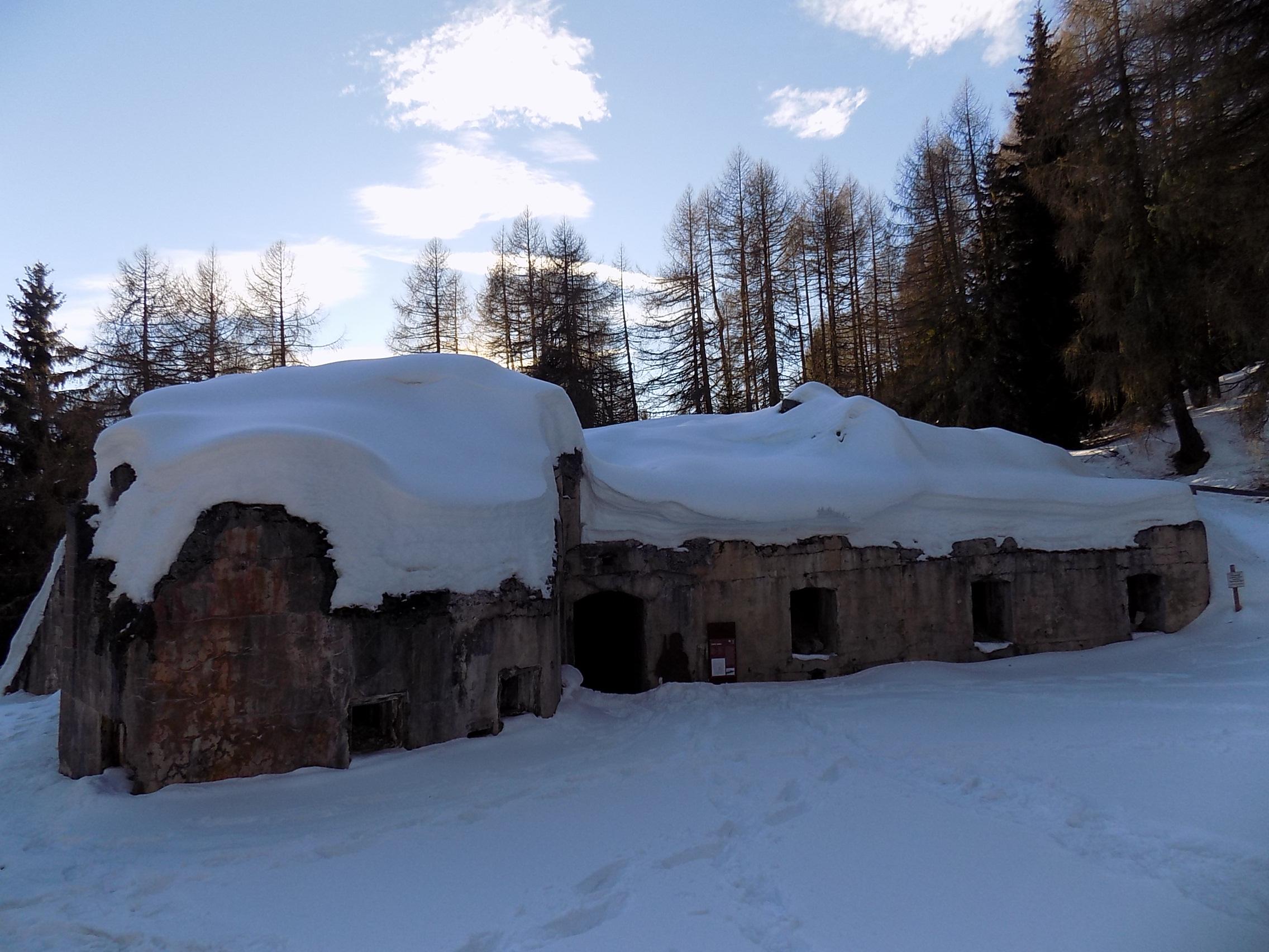 Forte di Mero - Passo del Tonale - Val Di Sole 25 Giugno 2018-dscn6569.jpg