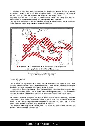 Alberi tipici delle regioni italiane-study-on-the-genus-ruscus-and-its-horticultural-value-14-638.jpg