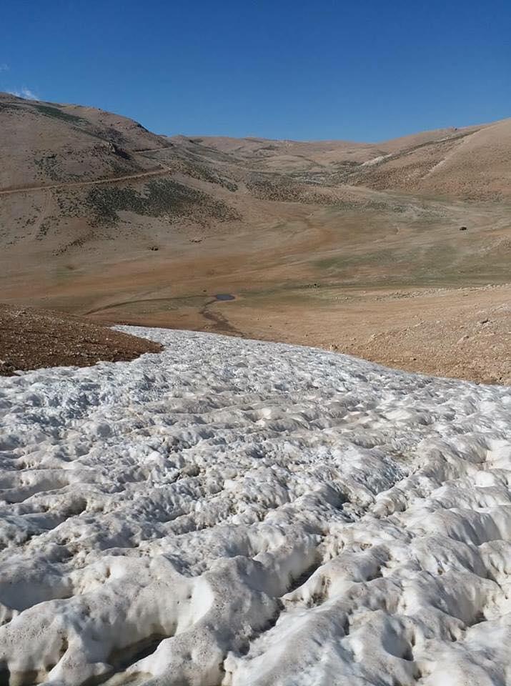 Catena del Libano - Situazione neve attraverso le stagioni-36802279_2464816706865695_6193640731173715968_n.jpg