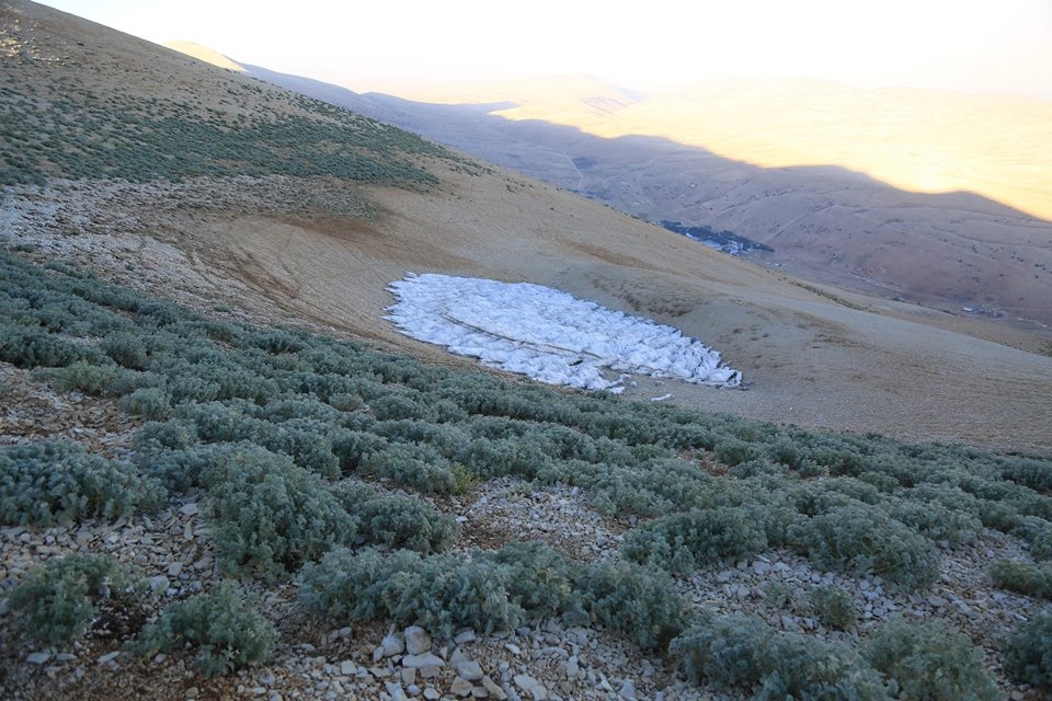 Catena del Libano - Situazione neve attraverso le stagioni-39245704_2097579993827546_6762270104534122496_n.jpg