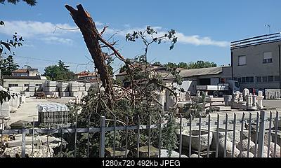 Downburst a Sant'Ilario d'Enza (RE)-20180904_121729.jpg