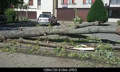Downburst a Sant'Ilario d'Enza (RE)-20180904_111458.jpg