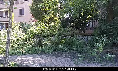 Downburst a Sant'Ilario d'Enza (RE)-20180904_112153.jpg