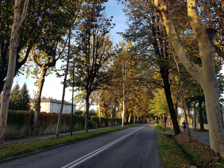 Basso Piemonte Ottobre 2018-20181024_173705.jpg