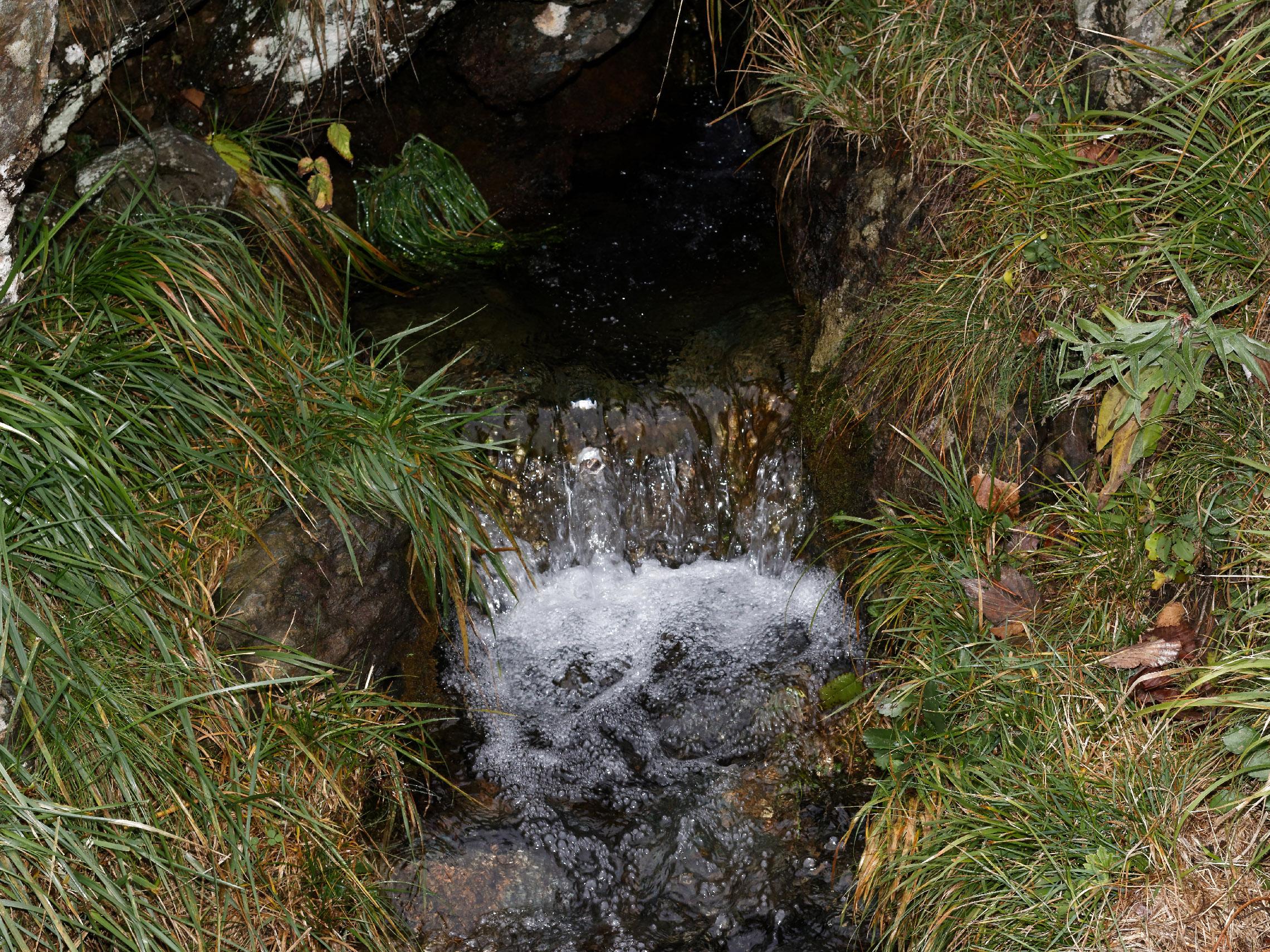 Parco naturale regionale del Beigua - Monte Reixa da Arenzano-img-8014-dx-.jpg