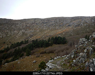Parco naturale regionale del Beigua - Monte Reixa da Arenzano-3a.jpg