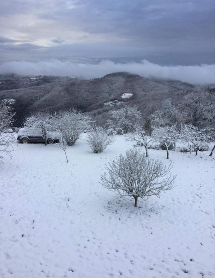 Toscana dal 12 al 20 dicembre 2018-panzano.jpg