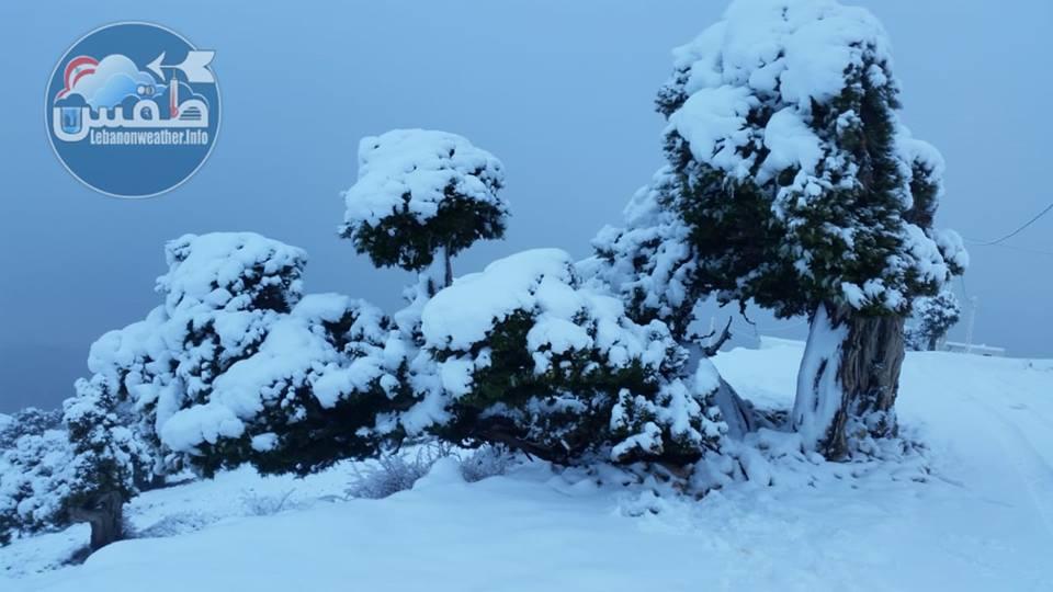 Catena del Libano - Situazione neve attraverso le stagioni-49085999_2140887542638492_8734252304963731456_n.jpg