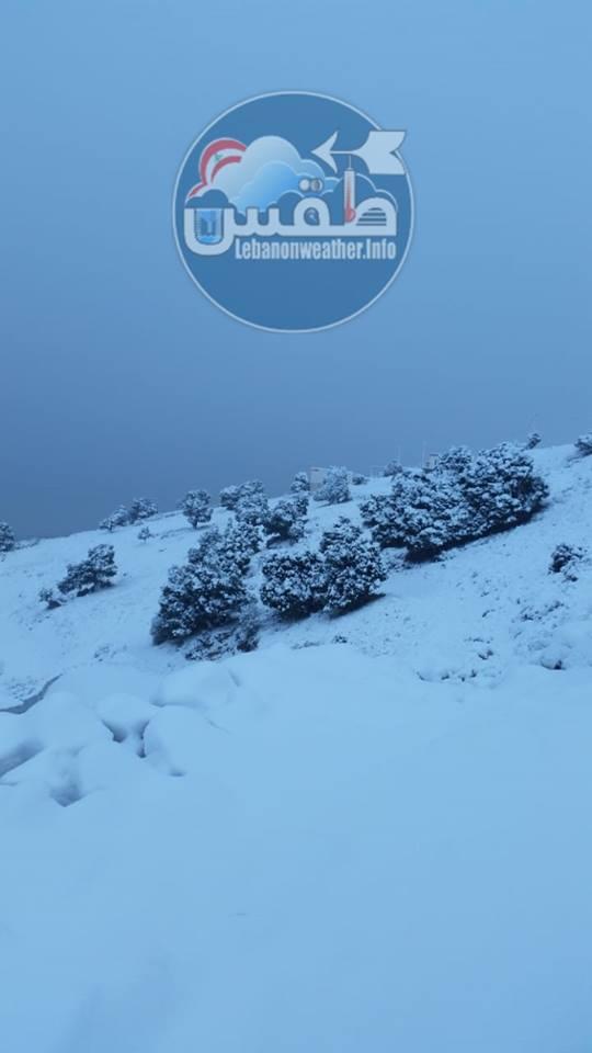 Catena del Libano - Situazione neve attraverso le stagioni-48405509_2140887422638504_724796643395764224_n.jpg