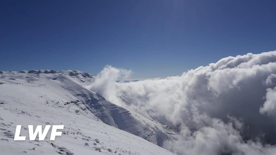 Catena del Libano - Situazione neve attraverso le stagioni-48396485_2264341250245486_7912465430189441024_n.jpg