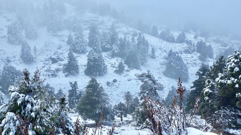 Catena del Libano - Situazione neve attraverso le stagioni-49482165_1098482983656642_1273801215964086272_n.jpg