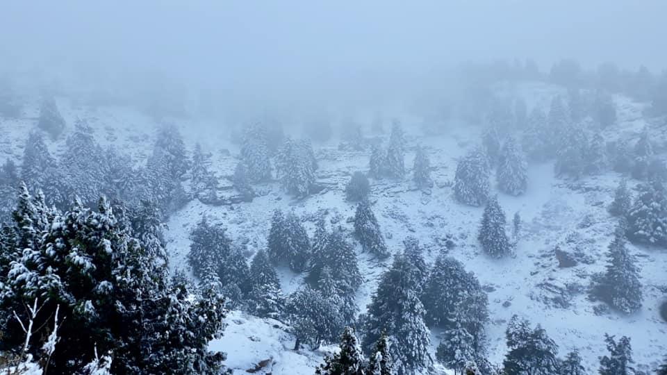 Catena del Libano - Situazione neve attraverso le stagioni-49028225_1098482996989974_7327214271400509440_n.jpg