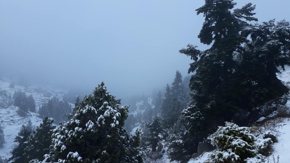 Catena del Libano - Situazione neve attraverso le stagioni-48414016_1098483026989971_6528531193942507520_n.jpg