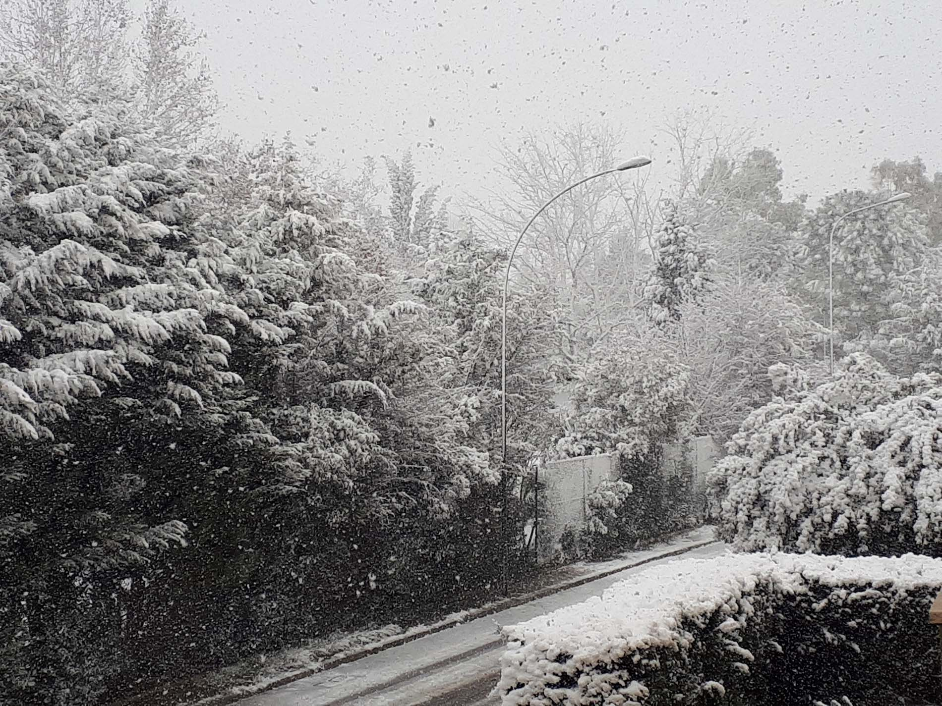 Galleria fotografica neve 03-04 gennaio 2019-20190104_125443.jpg