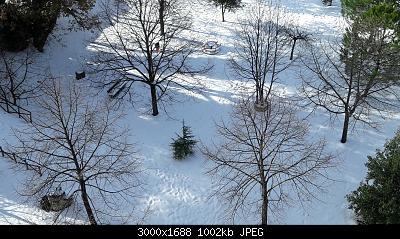 Nowcasting vegetazione 2019-20190105_133345.jpg