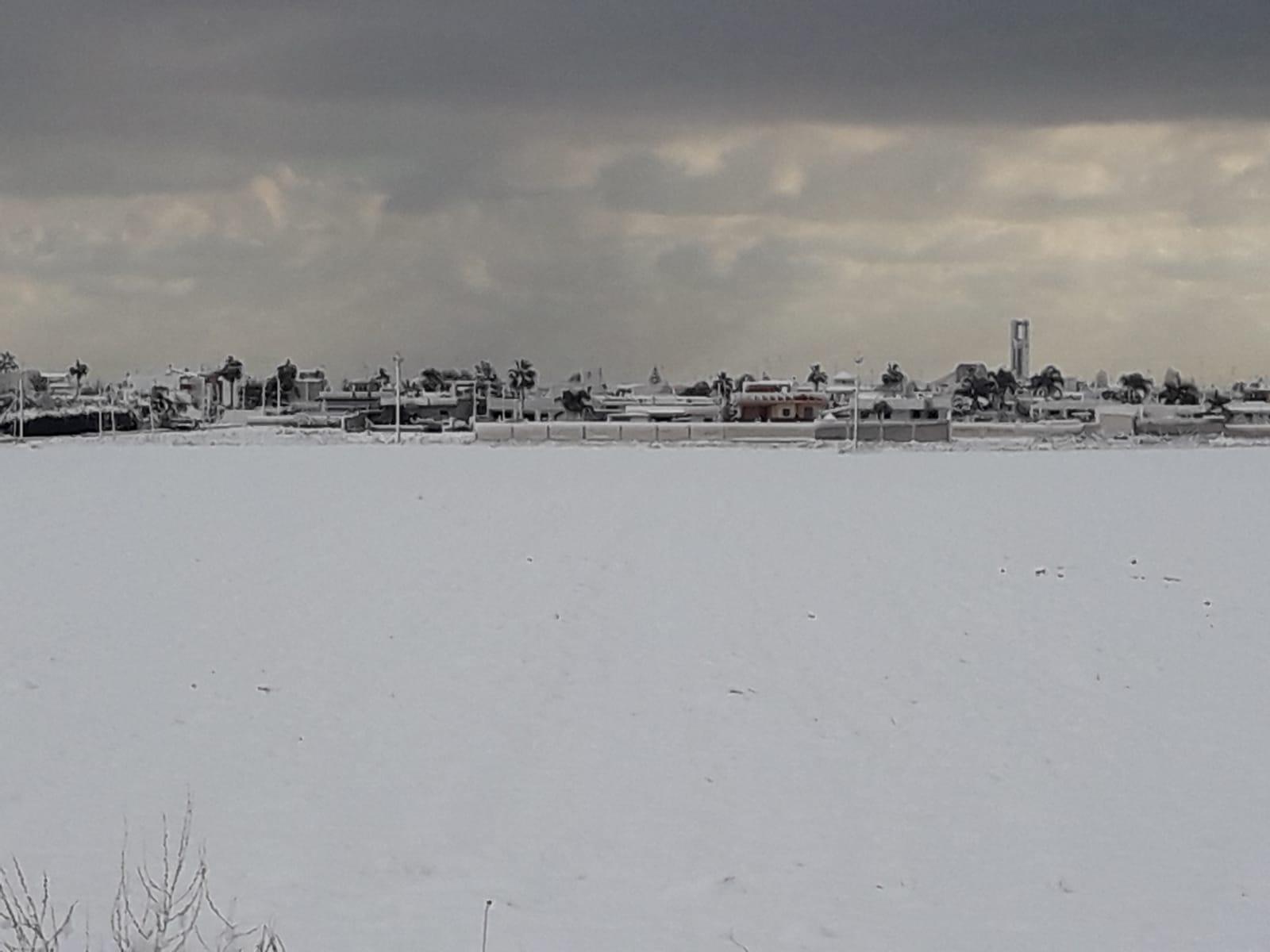 Galleria fotografica neve 03-04 gennaio 2019-img-20190105-wa0003.jpg
